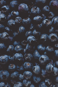 fresh bio blackberry  blueberry