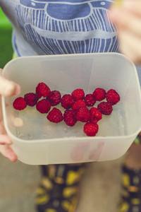 harvest fresh bio raspberry
