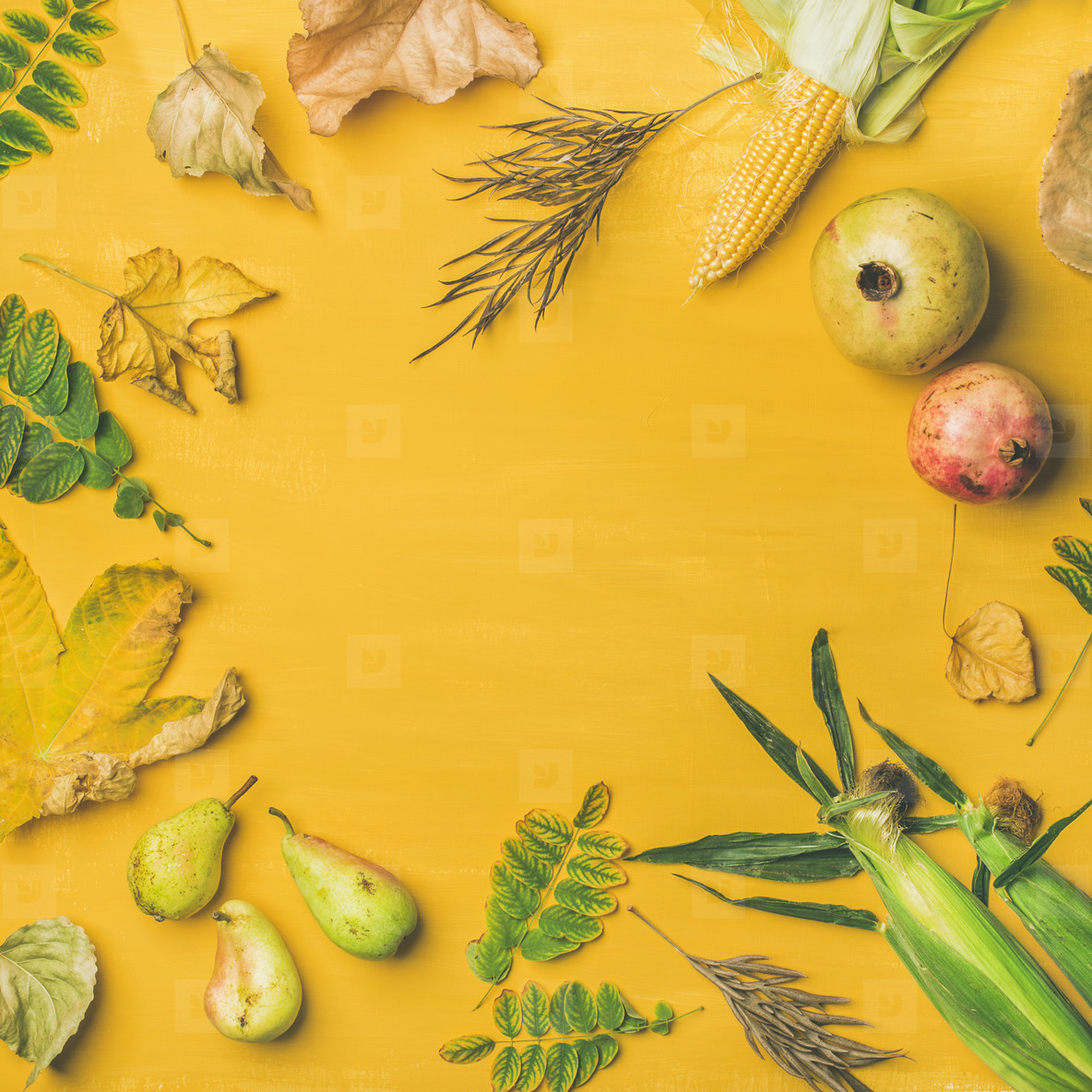 Fall background  texture  pattern  copy space