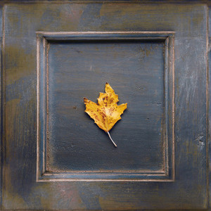 Wooden frame with an dried leaf