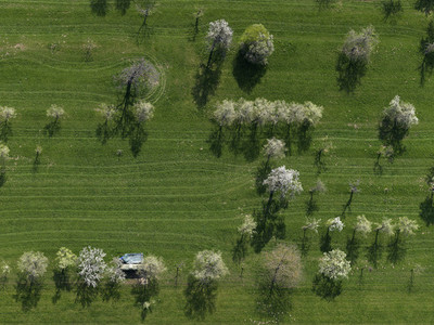 Aerial Overpass 13