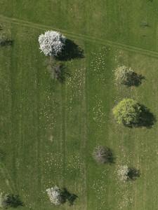 Aerial Overpass 14
