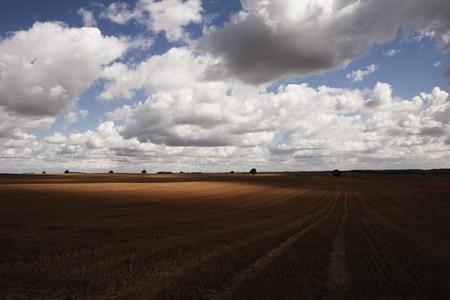 Farm To Fields 36