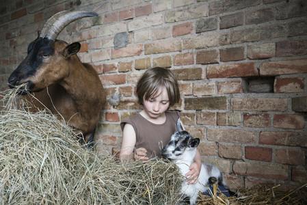 Forever Farm Fields 46