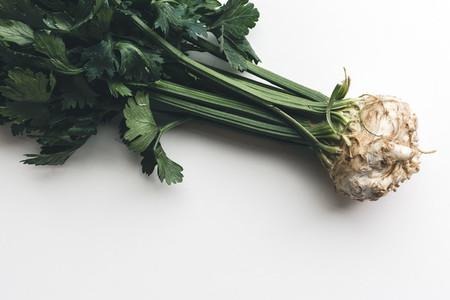 Fresh celery on white background