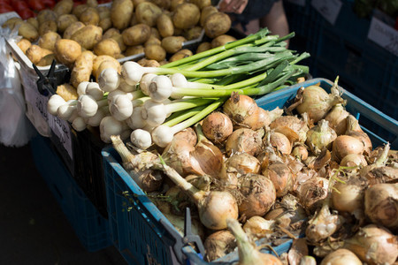 Yellow and spring onions