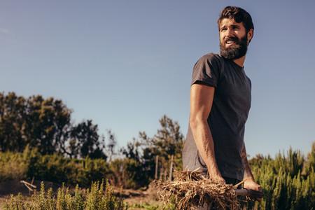 Male farmer working in the farm