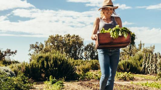 Female farmer with harvest box in farm