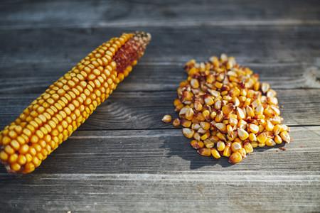 corn corncob