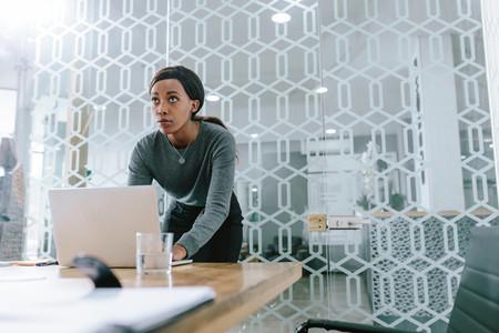 Female executive preparing a presentation for meeting