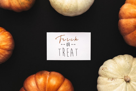 Orange and white pumpkins with trick or treat card