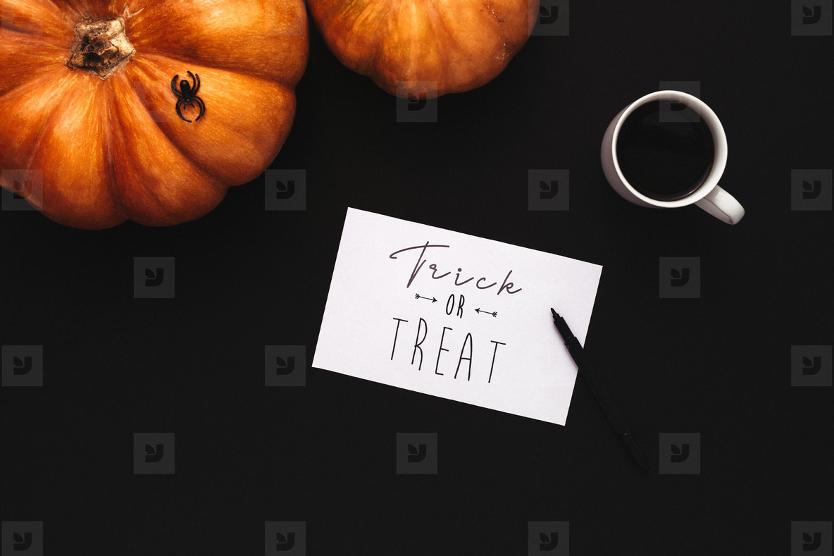 Flat lay concept of Halloween