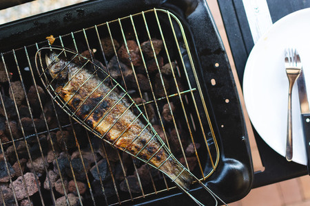 Grilling fish in grid