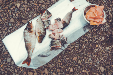 fish caught food