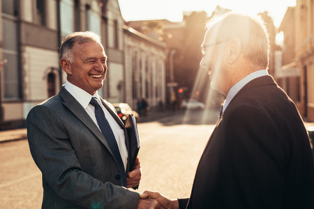 Senior business men greeting with a handshake