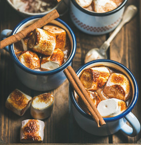 Hot chocolate with cinnamon and roasted marshmallows square crop