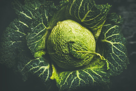 Raw fresh uncooked green cabbage over dark background