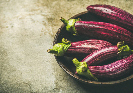 Fresh raw Fall harvest purple eggplants  copy space
