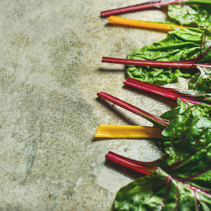 Flat lay of fresh green leaves of swiss chard square crop