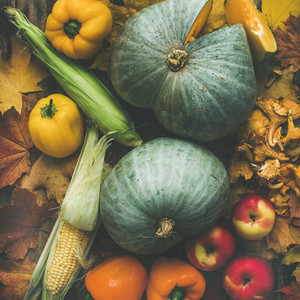 Fall colorful vegetables assortment over wooden table background  square crop