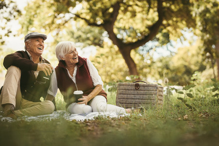 Senior couple having a great time on a picnic