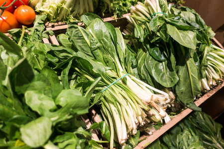 Bunch of fresh pak choi