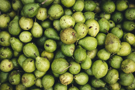 Bunch of pears aerial