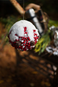 Holiday Ornament