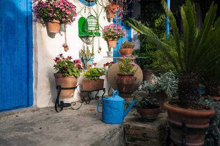 Typical andalusian courtyard in Cordoba  Andalusia Spain