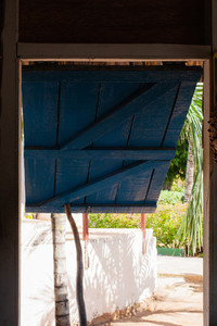 Window to Tropics