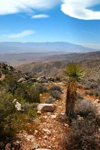 California Desert View