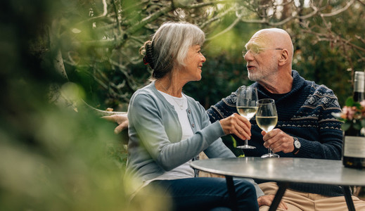 Senior couple toasting wine sitting in backyard