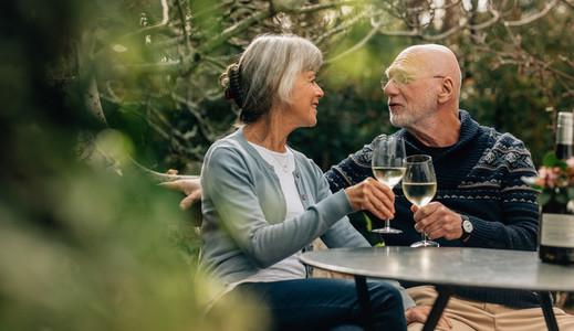 Senior couple toasting wine sitting in backyard