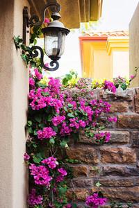Floral Garden Vignette