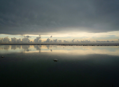 Neutral Horizon