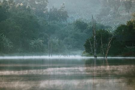 Mornings fog over the lake