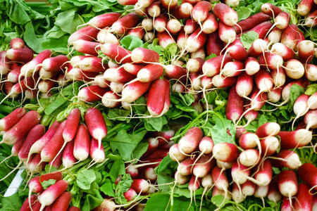 Organic radishes at market