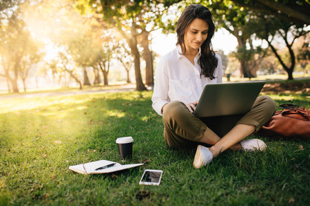 Freelancer working on laptop on green lawn in park