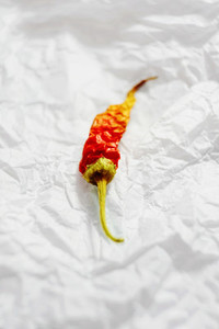 Hot pepper macro