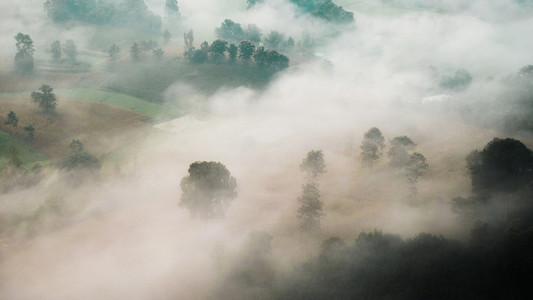 Misty Dawn 01