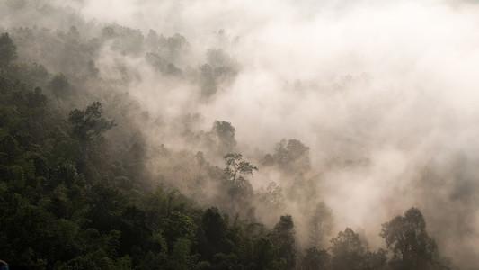 Misty Dawn 02