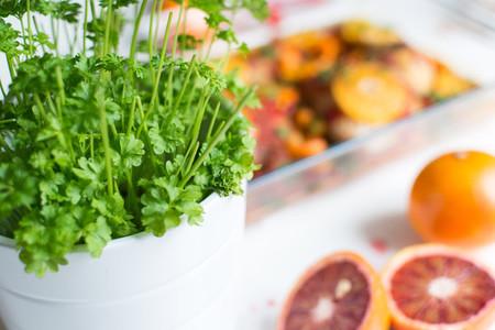 Pot of vibrant fresh parsley