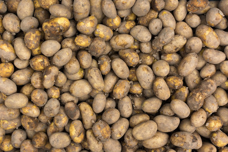 Potatoes at market aerial