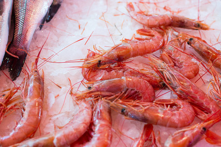 Raw red prawns for sale