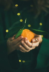 Tangerine fruit in hands of lady wearing green dress