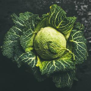 Raw fresh green cabbage over dark background square crop