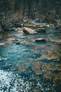 A river flowing