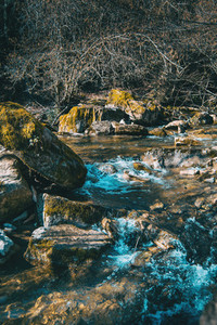 A sparkling river flowing