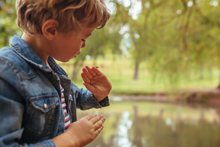 Little boy looking at an insect on his hand