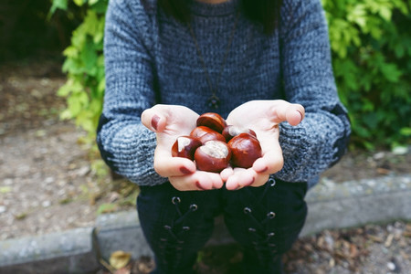 Close up of chestnuts on a caucasian young woman hands while sit